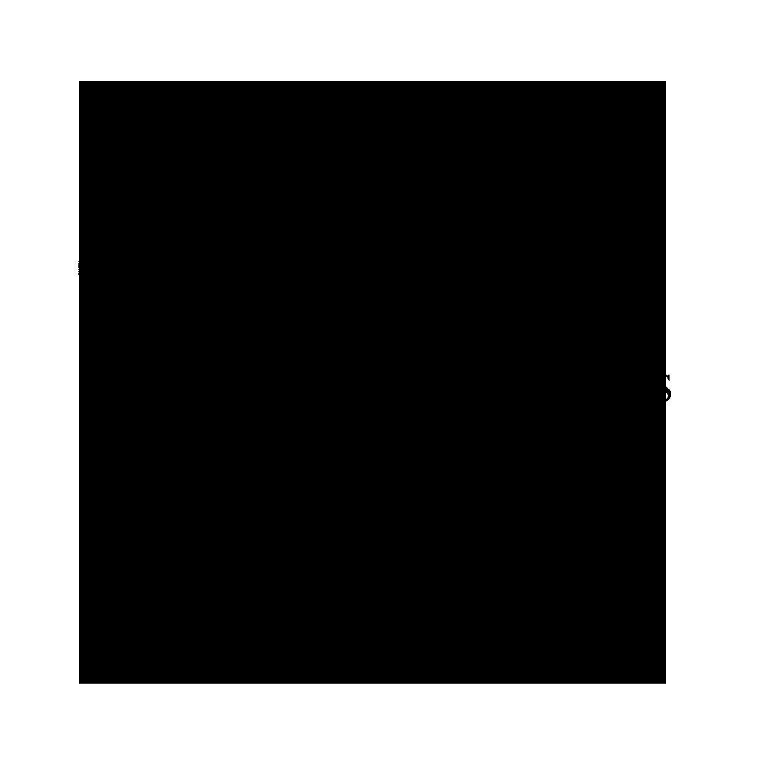 Logo Transparent (no bg)